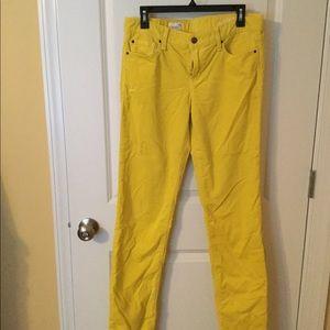 Gold/yellow corduroy skinny jeans